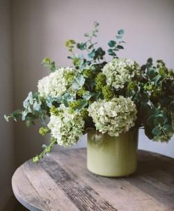 Украшаем кухню цветами: на каком букете остановить свое внимание